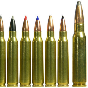 are polymer tipped bullets good