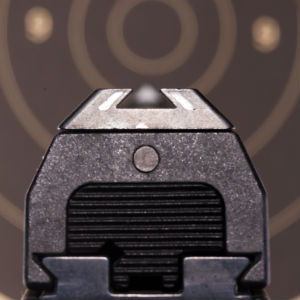 do adjustable sights matter on a carry gun
