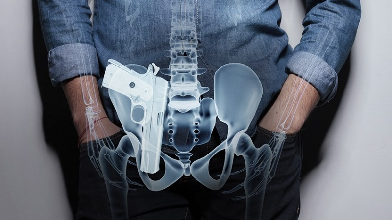 appendix concealed carry