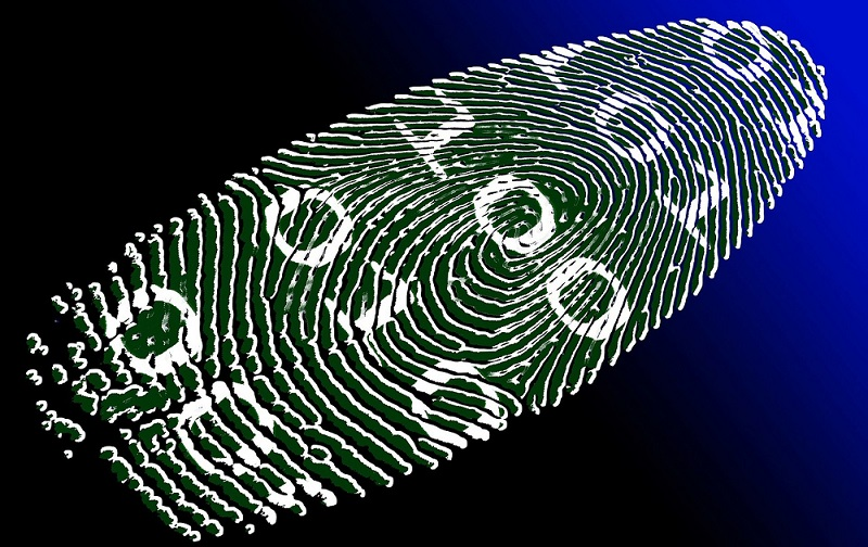 fingerprint on a biometric page